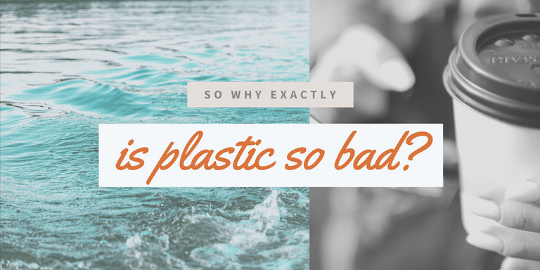 Four evil truths about plastic